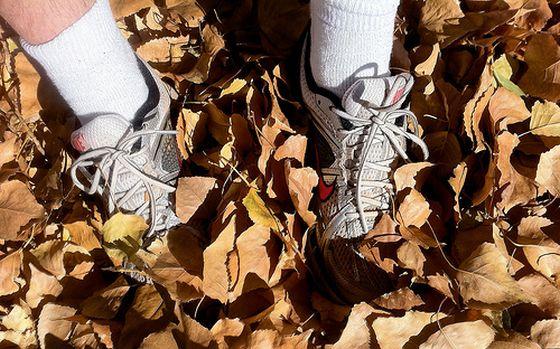 Laufschuhe, Jogging, Herbst. Foto: Flickr/cogdogblog